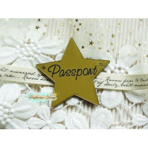 "Бирка пластиковая для обложки на паспорт ""Звезда"" ENG, цвет золото, 60*60 мм"