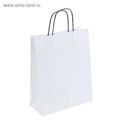 """Пакет крафт """"Радуга"""" белый, 25 х 11 х 32 см, черная ручка"""