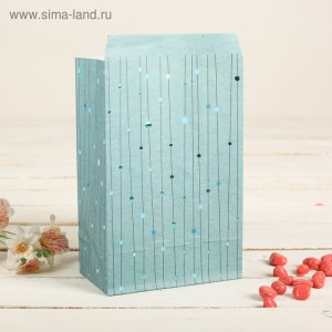 Пакет фасовочный с плоским дном, цвет синий+горошки, 20 х 13 х 7,5 см